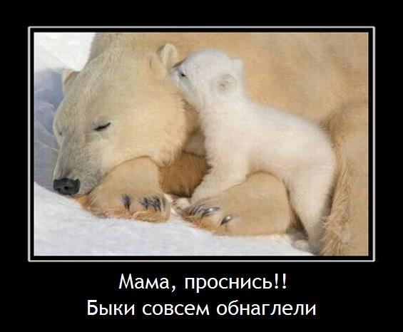 мама проснись