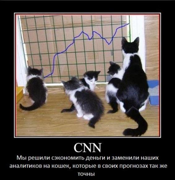 аналитики cnn