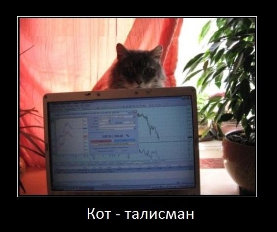 кот талисман