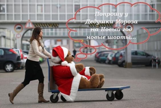 биржевой медведь на новый год