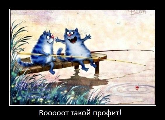 коты о тейк профите